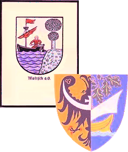logo-ssmio-transp